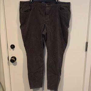 Like New Size 20 Stretch Gray Rockstar Corduroys